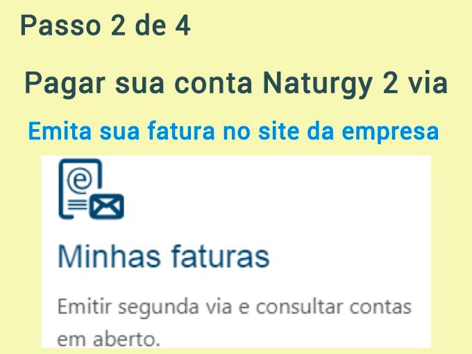 Passo 2 de 4 para pagar conta Naturgy 2 via (1)